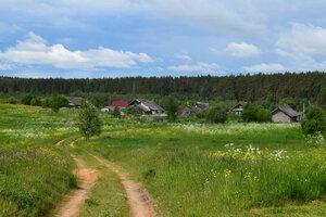Деревня Васильки
